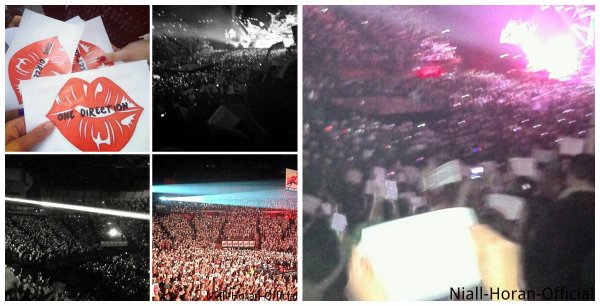 (29.04) Gifs: Zayn portant Niall comme une princesse / Harry nous prenant en photo / Salle pendant Little Things / Projet Kiss You & LWWY *.* / Photo des Fans posté sur l'Instagram d'Harry ♥