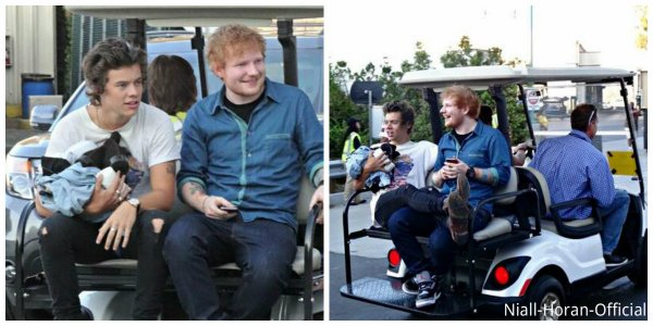 (11.08) Après les TCAs: Ed & Harry ; Niall avec des Fans / (12.08) Twitcam de Niall / Chanson leakée..: Just can't let her go ♥