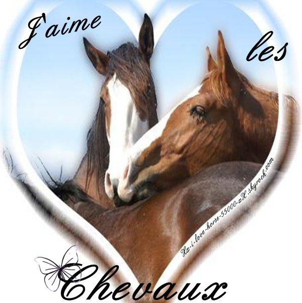 Blog de xx i love horse 55000 xx page 4 blog sur les - Image cheval a imprimer ...