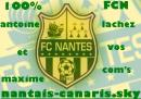 Photo de nantais-canaris