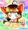nina-journal-x3
