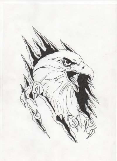 Dessin aigle au stylo dessin et musique rock - Dessin de aigle ...