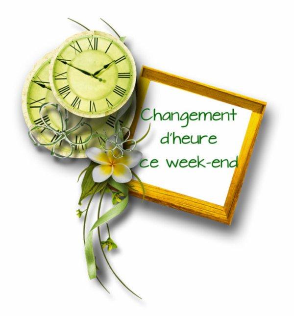 WEEK-END POUR LES MARMOTTES !