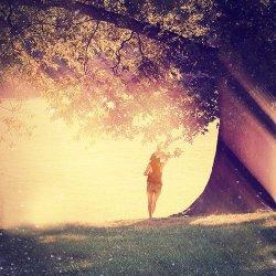 La vie est faite d'illusions. Parmi ces illusions, certaines réussissent. Ce sont elles qui constituent la réalité.
