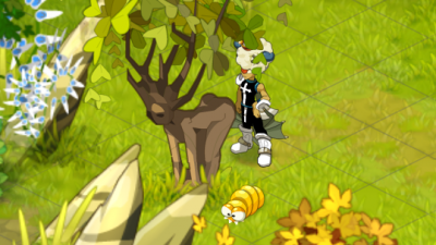 J'ai pas la tete dans le c*l mais la b*te dans l'arbre.