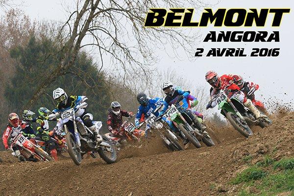 ANGORA Belmont 2016