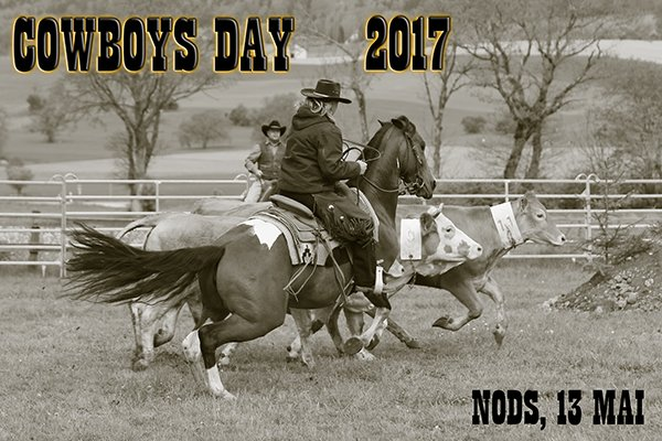 COWBOYS DAY 2017