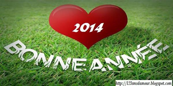 Une merveilleuse année a vous tous mes amis, et surtout portez vous bien ♥