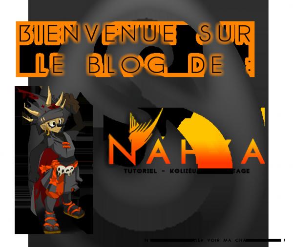 Présentation du joueur : Nahya