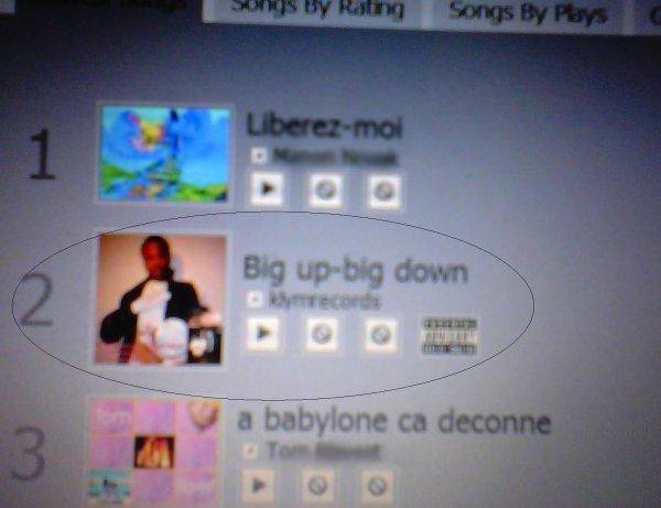 'Big up-Big Down' au top 5 du classement dès son lancement