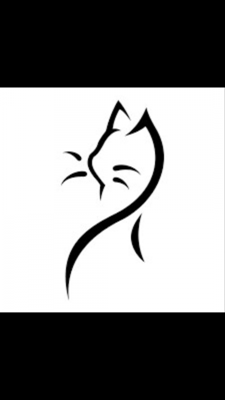 Mr le chat