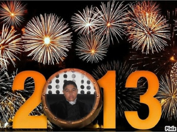 bomne  amnee  2013