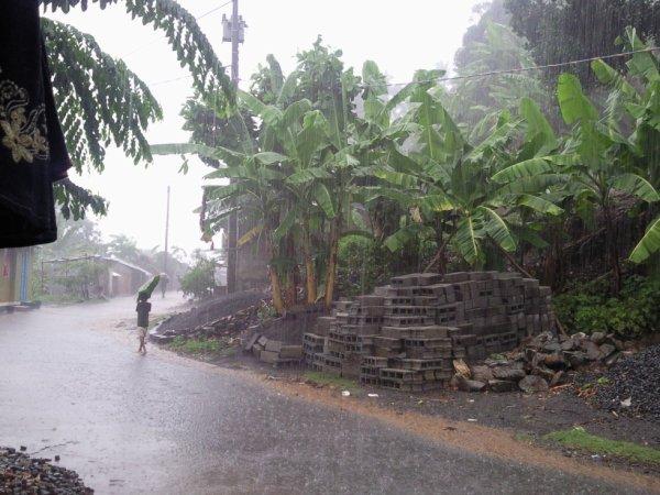 une pluie tropical