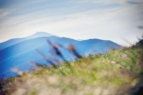 Au mont Ventoux, une ascension avec Pétrarque