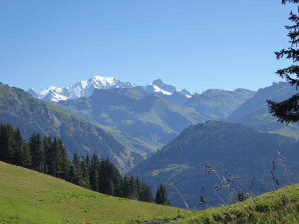 La grande route des Alpes