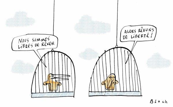 Drôles d'oiseaux par Serge Bloch