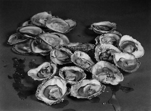 Poétiques de l'huître