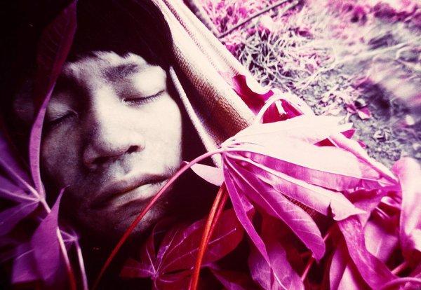 La photographe et les Yanomami