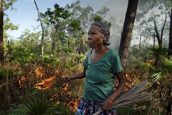 Sauver la biodiversité en Australie par  Lilas-Apollonia Fournier