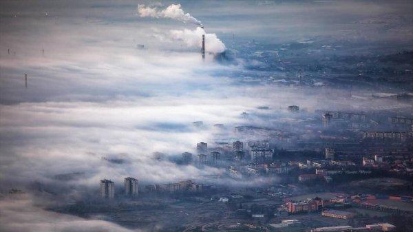 Etat des lieux d'une planète en danger