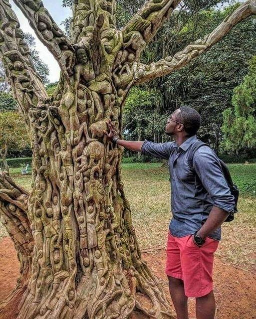 Arbre sculpté au Ghana