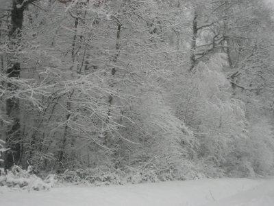 Tombe la neige ...