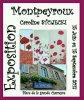 Exposition Montpeyroux (63 puy de dome )