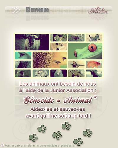 Bienvenue sur Génocide•Animal   ◦ ◦ ◦ ◦ ◦ ◦ ◦ ◦ ◦ ◦ ◦ ◦ ◦ ◦ ◦ ◦ ◦ ◦ ◦ ◦ ◦ ◦ ◦ ◦ ◦ ◦ ◦ ◦ ◦ ◦ ◦ ◦ ◦ ◦ ◦ ◦ ◦ ◦ ◦ ◦ ◦ ◦ ◦ ◦ ◦ ◦ ◦ ◦ ◦ ◦ ◦ ◦ ◦ ◦ ◦ ◦ ◦ ◦ ◦