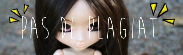 /!\ NO PLAGIAT /!\