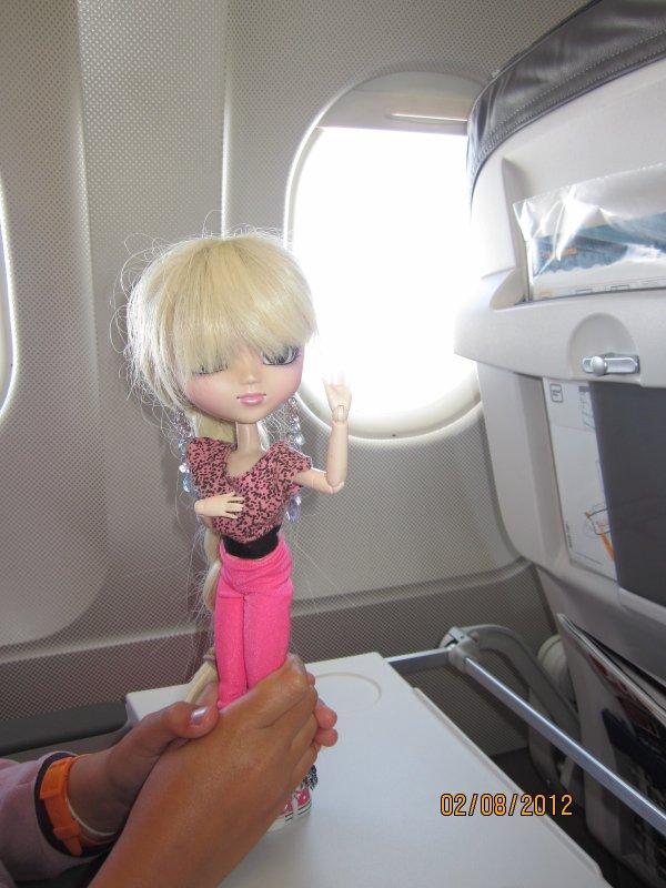 Dans l 39 avion aimelespetshop c 39 est moi - C est interdit dans l avion ...