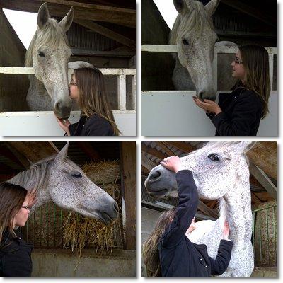 """"""" Balance ton coeur devant l'obstacle , et ton cheval suivras ! """""""