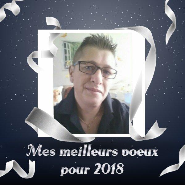 Meilleurs voeux pour 2018 moi je vous dit à l'année prochaine