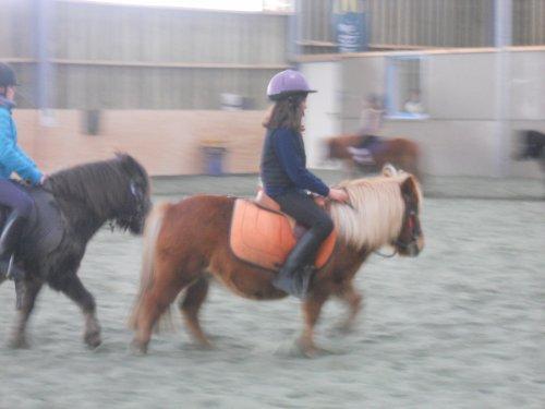 Présentation d'une super poney