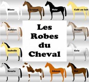 Les robes du cheval