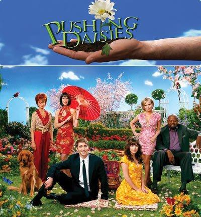 pushing daisie