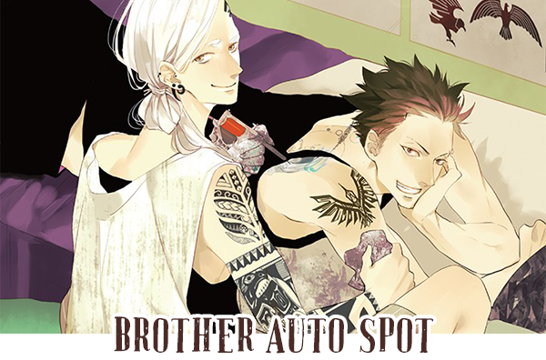 Brother Auto Spot