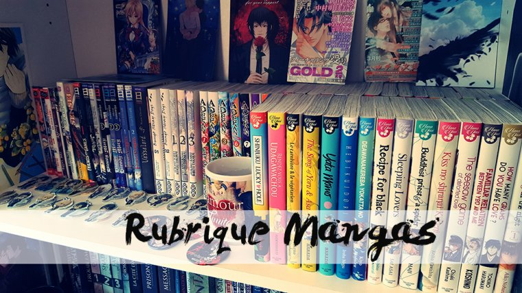 Fiches Mangas