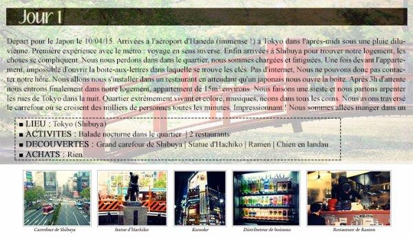 Journal de bord : Japon 2015