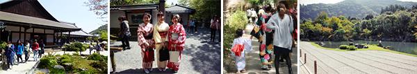 La forêt d'Arashiyama