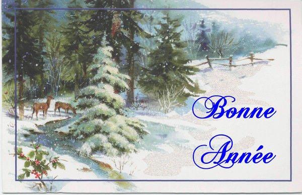 bonne et heureuse annee 2011 bonheur et sante bisous