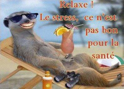 tres bon week end a vous bisous !!!!