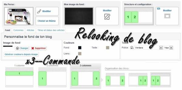 x3--Commande Relooking de blog 20-25 chiffres