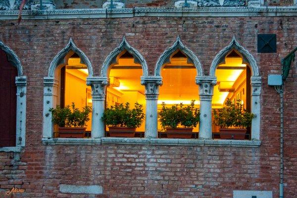Venise (Canon Kiss )