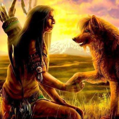 indien & le loup