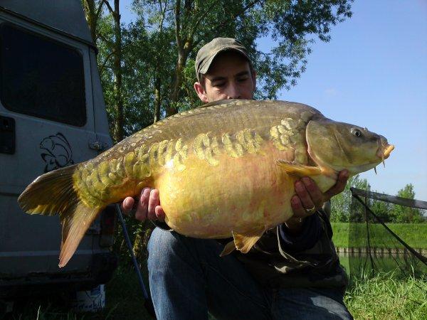 un beau poisson de rivière