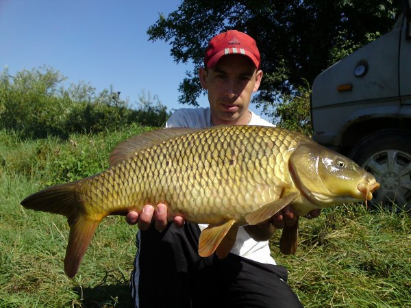 5kg500 a la tiger nuts