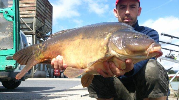 la tiger nuts a étais plus efficace que les bouillettesavec un résultat de deu poissons de :5kg300 et 8kg00