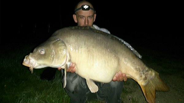 14 kg 800