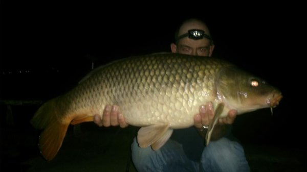 8kg500