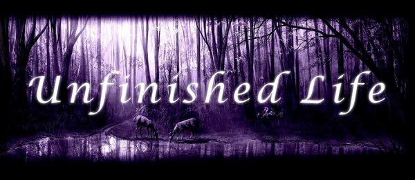 Unfinished Life
